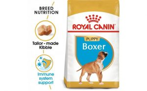 Breed Health Nutrition Boxer Puppy