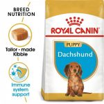 Breed Health Nutrition Dachshund Puppy
