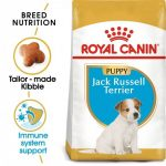 Breed Health Nutrition Jack Russell Puppy
