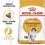 Feline Breed Nutrition Norweigian Forest Cat Adult