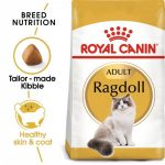 Feline Breed Nutrition Ragdoll Adult